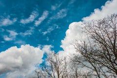 Cloudscape de brillante foto de archivo libre de regalías