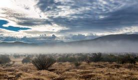Cloudscape efter regn Arkivbild