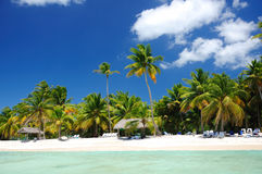 Cloudscape and exotic beach on Saona island Royalty Free Stock Photography