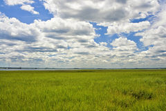 Cloudscape over New Jersey Marshlands Royalty Free Stock Photo