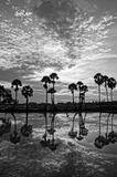 Cloudscape and palm trees in silhouette reflect on water Stock Images