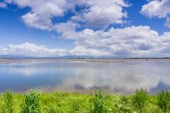 White clouds reflected in the ponds of San Francisco bay. Cloudscape reflected in the ponds; Dumbarton bridge and office buildings in the background; Bedwell stock image