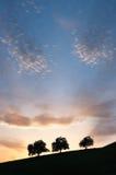 cloudscape sylwetki trzy drzewa Zdjęcia Royalty Free