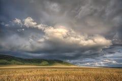 Cloudscape tempestoso di estate Immagine Stock