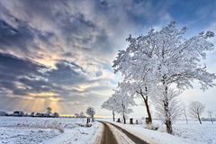 Cloudscape in a white winter landscape Stock Photos
