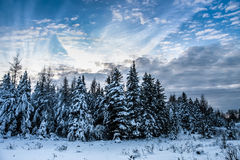 Cloudscape and winter scene Stock Images