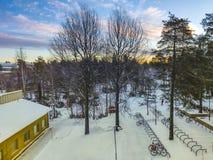 Cloudspace in bluesky met sneeuw behandelde grond door de pijnboomboom stock fotografie