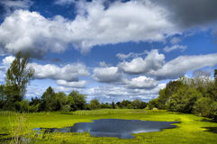 Cloudy. Background of cloudy sky and water royalty free stock photography