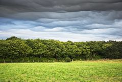 Cloudy. Landscape with meadow , trees and cloudy sky in northern Spain Royalty Free Stock Photography