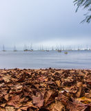 A cloudy autumn afternoon Royalty Free Stock Photos