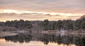 Cloudy autumn dawn. First snow on the autumn river. Spruce trees Royalty Free Stock Photos