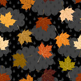 Cloudy autumn pattern Stock Photography