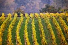 Cloudy autumn in Wachau valley Royalty Free Stock Photos