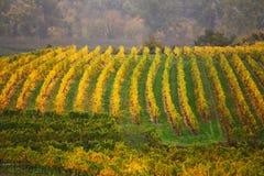 Cloudy autumn in Wachau valley Stock Photo