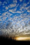 Cloudy beach. Unusual cloudscape; clouds scattered over the sky during sunset Stock Photography