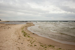 Cloudy beach. Stock Image