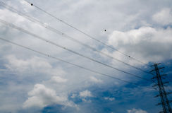 Cloudy blue sky  with electricity pylons Royalty Free Stock Photography