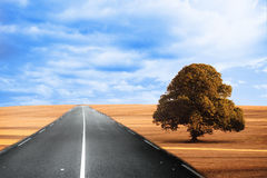 Cloudy brown landscape with street Stock Image