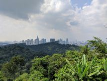 Cloudy City View with Skyline behind Jungle stock images