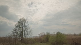 Cloudy clouds move very fast, the sun shines, grass and trees winds the wind stock video footage