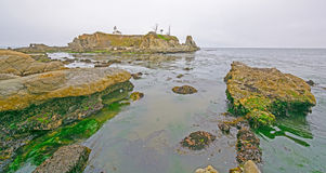 Cloudy Coastal Scene at Low Tide Royalty Free Stock Photo