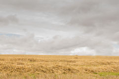 Cloudy countryside background Stock Photography