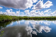 Cloudy day at Everglades National Park. The marshes, swamps, and wetlands of the Everglades are home to some of the most interesting wildlife and vegetation stock photography