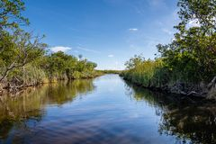 Cloudy day at Everglades National Park stock image