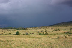 Cloudy day. In Masai Mara National Reserve, Kenya Royalty Free Stock Photography