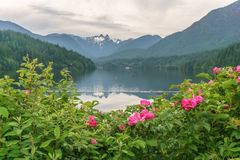 Cloudy day on mountain lake and green forest Stock Photo