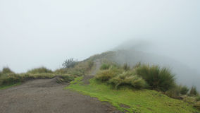 A cloudy day on the trail that leads to the summit of the Rucu Pichincha volcano near the city of Quito. Royalty Free Stock Photography