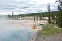 Cloudy Day at Yellowstone. This was one of the hot springs at Yellowstone National Park and due to it being colder this day it was steamy as well. The green Stock Photography