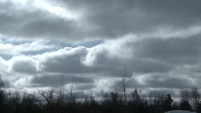 Cloudy dull sky and forest in windy day time lapse stock video footage