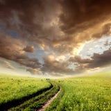 Cloudy field Stock Photo