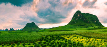 Cloudy field. Green fields with karst hills are covered with cloudy clouds Royalty Free Stock Image