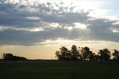 Cloudy Field with sun rays. Field at La Pampa, Argentina. Sky with clouds at the evening, with sunny rays through it Royalty Free Stock Images