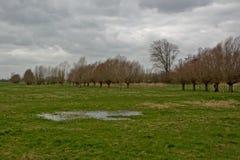 Cloudy flemish farmland landscape Royalty Free Stock Image