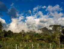 Cloudy landscape of the Andean mountains. A cloudy landscape of the Andean mountains of central Colombia illuminated by the sunset light royalty free stock image
