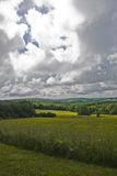 Cloudy meadows. Some franch meadows under a cloudy sky Royalty Free Stock Images