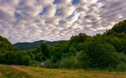 Cloudy morning in mountainous countryside. Lovely landscape with forested hills in early autumn stock photography