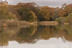 A cloudy morning at the Ornamental Pond, Southampton Common Royalty Free Stock Image