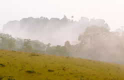Cloudy morning in western africa savanna, Congo. Royalty Free Stock Photos