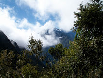 Cloudy Mountain Framed By Trees Royalty Free Stock Image
