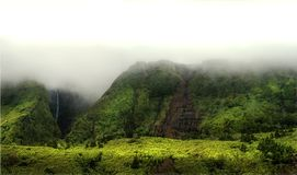 Cloudy mountains of flores, acores islands Royalty Free Stock Photography
