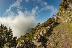 Cloudy Moutains of El Hierro. Old footpath abutting on bright blue sky. Mirador de Jinama.  royalty free stock photography