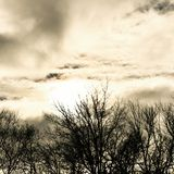 Cloudy. New York Nature Royalty Free Stock Photo