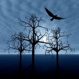 Cloudy night and bird royalty free stock image