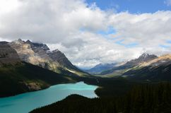 Cloudy Peyto Lake 9 royalty free stock image
