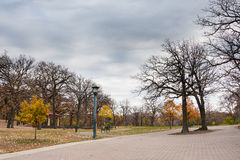 Cloudy Skies Over The Park. These are trees at the Minnehaha Park in Minneapolis, Minnesota. This was taken during late fall Royalty Free Stock Images