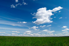 Cloudy sky. Blue sky with white clouds over green grass Royalty Free Stock Photography
